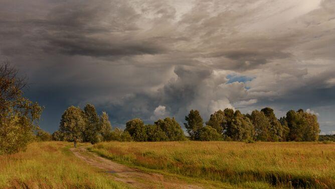 Pogoda na dziś: spadnie deszcz, możliwe są burze