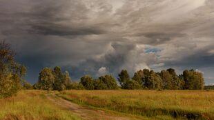 Pogoda na 5 dni: upały, ale i koniec łagodnej aury
