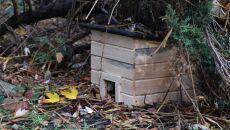 Domki są drewniane (PAP/Jacek Bednarczyk)