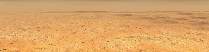 Wizja artystyczna równiny Elysium Planitia (NASA)